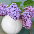 Lovely lilac in the vintage vase — Foto Stock