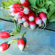 Fresh ripe radish closeup — Foto Stock