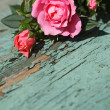 Romantic vintage roses background — Foto Stock
