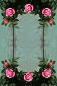 Romantic vintage roses background — Stock Photo
