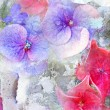 Beautiful summwer flowers background — Foto Stock