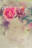 Romantic pink roses background — Stockfoto