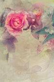 Romantické růžové růže pozadí — Stock fotografie