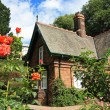 Little house with roses — Stock Photo