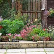 Garden stone landscaping — Stock Photo