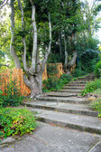 Stone stairs in the garden — Stock Photo