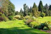 Prachtige tuin in het park — Stockfoto