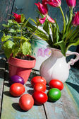 Beautiful Easter painted eggs — Stock Photo