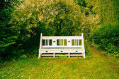 Beautiful vintage bench in the garden — Stock Photo
