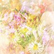 Pretty daisies artistic background — Stock Photo