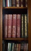 Históricos libros antiguos en la biblioteca — Foto de Stock