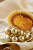 Pearl necklace in shell on a beige background — Stock Photo