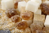 Different types of sugar - brown, white and refined sugar — Stock Photo