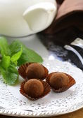 Chocolate candy truffle with fresh mint — Stock Photo