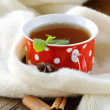 Tea with spices - cinnamon, a carnation and an anise — Stock Photo