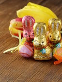 Chocolate Easter bunny (sweets) with tulips — Stock Photo