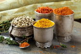 Various spices (curcuma, paprika, saffron, coriander) in metal bowls — Stock Photo