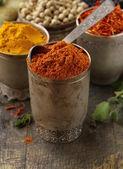 Various spices (curcuma, paprika, saffron) in metal bowls — Stock Photo