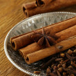 Cinnamon, anise and clove on a silver plate — Stock Photo #20249147