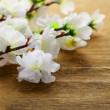 Flowering sakura tree branches (artificial) on a wooden background - Stock Photo