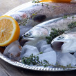 Fresh raw fish trout on ice with lemon and thyme — Стоковая фотография