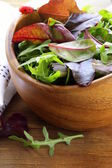 Mix salad (arugula, iceberg, red beet) in a bowl — Стоковое фото