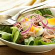 French salad Nicoise - with tuna and egg — Stock Photo #23150698