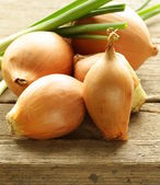 Fresh onions green and shallot on a wooden background — Stock Photo