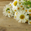 Bouquet of fresh daisies on a wooden background — Lizenzfreies Foto