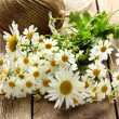 Bouquet of fresh daisies on a wooden background — Stock Photo #26398633