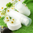 Stock Photo: Cosmetic cream - organic and natural face care