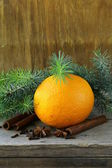 Christmas composition - orange and spices and fir tree — Stock Photo