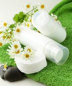 Cosmetic cream - organic and natural face care — Stock Photo