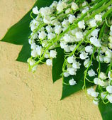 Bouquet of spring flowers lily of the valley — Stock Photo