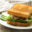 Stock Photo: Tuna sandwich with cucumber and lettuce