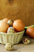 Organic fresh eggs on a wooden table — Stock Photo