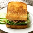Tuna sandwich with cucumber and lettuce — Stock Photo #29052737