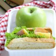 Sandwich with ham, green salad and apple in a box - school lunch — Foto Stock