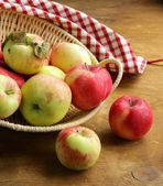Autumn harvest of organic apples in the basket — Foto Stock