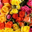 Different color roses (yellow, red, pink) may be used as the background — Stock Photo #31724453