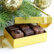 Delicious gourmet chocolate candy sweet present — Stock Photo #32244045