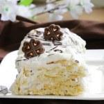 White layer cake with custard (Napoleon) decorated with chocolate — Stock Photo #33181275
