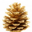 Golden Christmas fir-cone  on a white background — Stock Photo