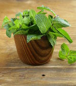 Bunch of fresh green mint on wooden cutting board — Stock Photo