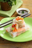 Spring rolls with vegetables — Stockfoto