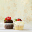 Two vanilla and chocolate cupcakes on a vintage background — Stock Photo