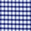 Kitchen towel in the blue checkered - use as a background — Stock Photo #33855207