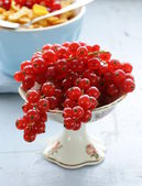 Organic sweet ripe red currant in a small vase — Stock Photo