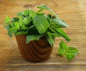 куча свежих зеленая мята — Стоковое фото