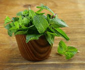 Bunch of fresh green mint — Stock Photo